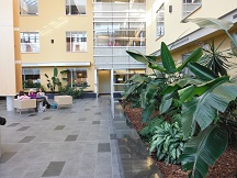 The conservatory in the hospital where my brother successfully survived emergency heart surgery