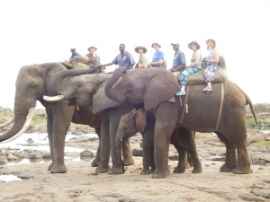 The 5 of us on African elephants in Zambia